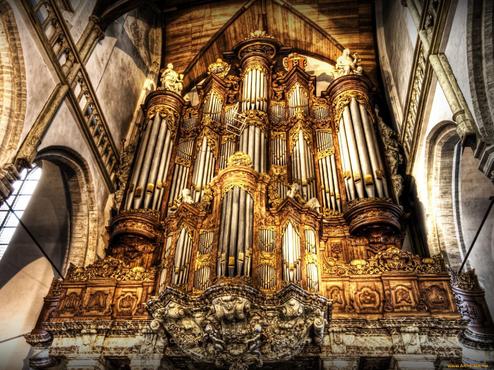 Organ музыка музыкальные инструменты